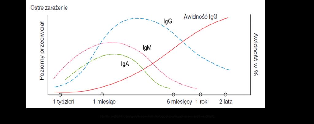 Toksoplazmoza (Toxoplasma gondii) IgM